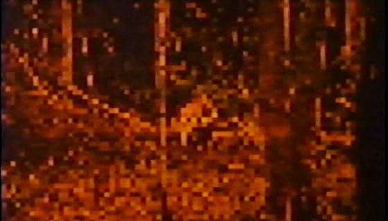 Robowar - Omega-1 Heat Vision